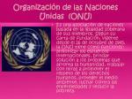 organizaci n de las naciones unidas onu