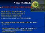 virusurile1