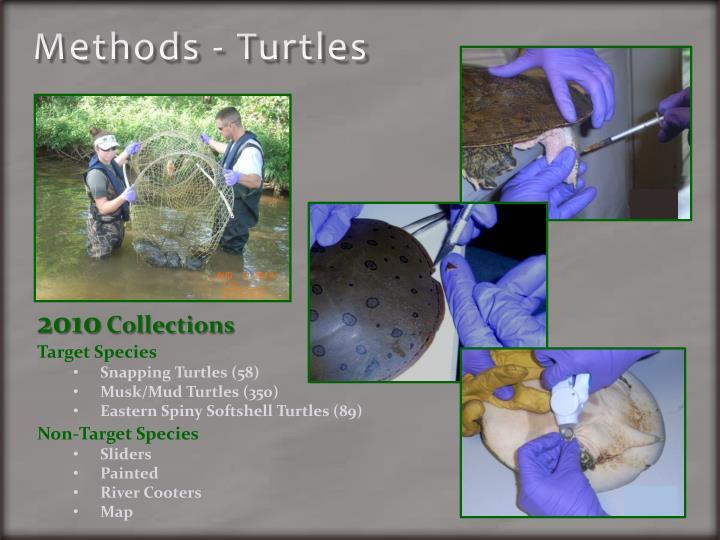 Methods - Turtles