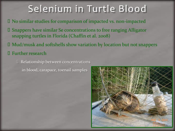 Selenium in Turtle Blood