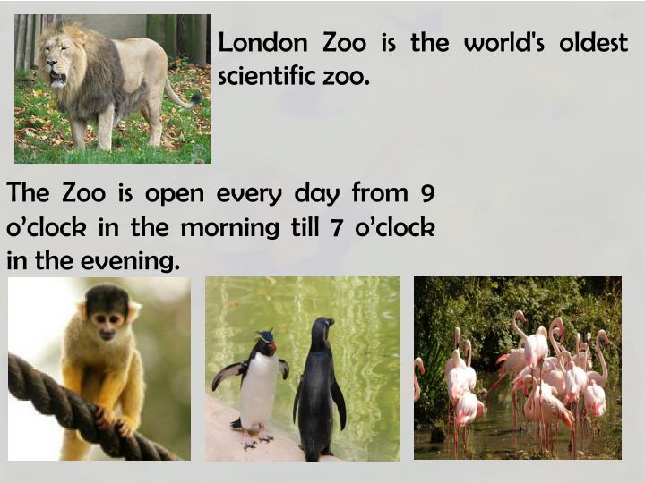 London Zoo is the world's oldest scientific zoo.