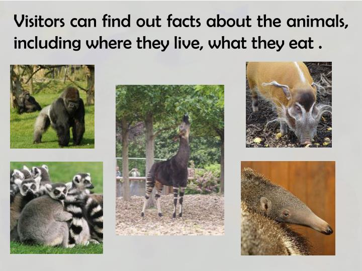 Visitors can find out facts about the animals, including where they live, what they eat .