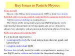 key issues in particle physics