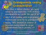grandparents raising grandchildren