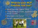 what do your mcp families look like