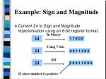 example sign and magnitude