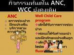 anc wcc