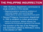 the philippine insurrection2