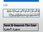 surat al baqarah the cow1