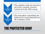 the protected roof2
