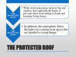the protected roof3