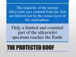 the protected roof6