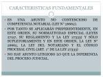 caracteristicas fundamentales
