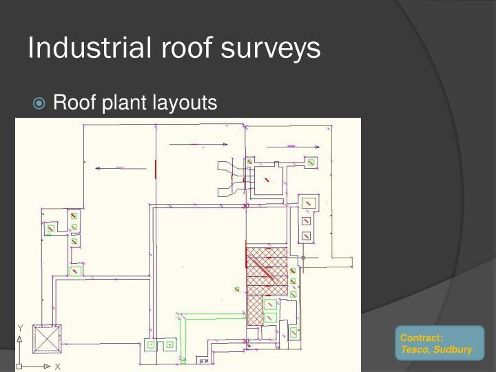 Industrial roof surveys