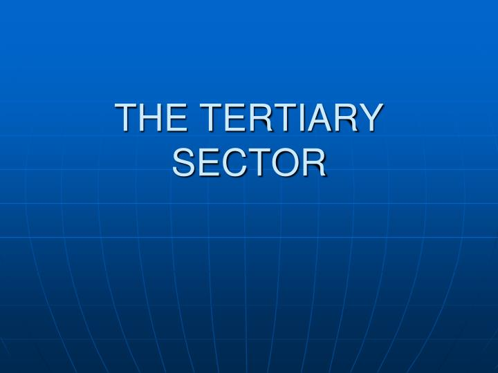 the tertiary sector n.