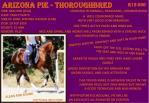 arizona pie thoroughbred