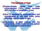 pathogenesis of gout