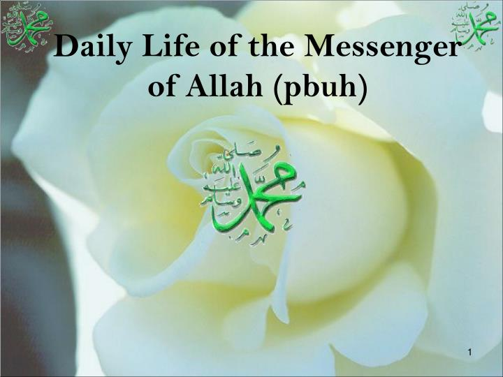 daily life of the messenger of allah pbuh n.