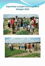 experien e cu pepni verzi i galbeni biologici 2010