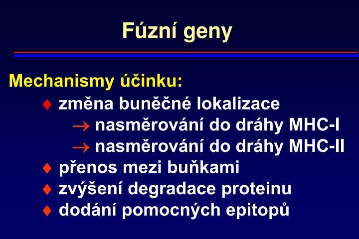 Fúzní geny