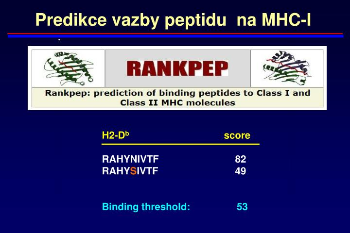 Predikce vazby peptidu  na MHC-I