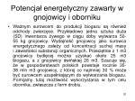 potencja energetyczny zawarty w gnojowicy i oborniku