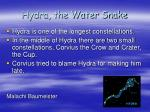 hydra the water snake