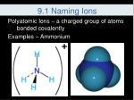 9 1 naming ions8