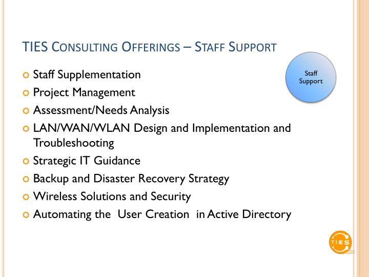 TIES Consulting Offerings – Staff Support