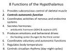 8 functions of the hypothalamus