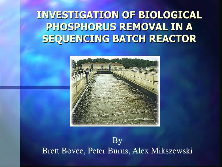 investigation of biological phosphorus removal in a sequencing batch reactor n.