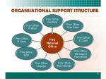organisational support structure
