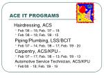 ace it programs