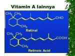 vitamin a lainnya