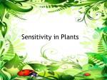 sensitivity in plants