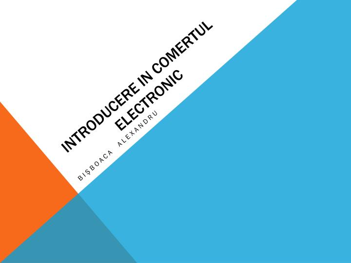 introducere in comertul electronic n.