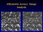 affymetrix arrays image analysis
