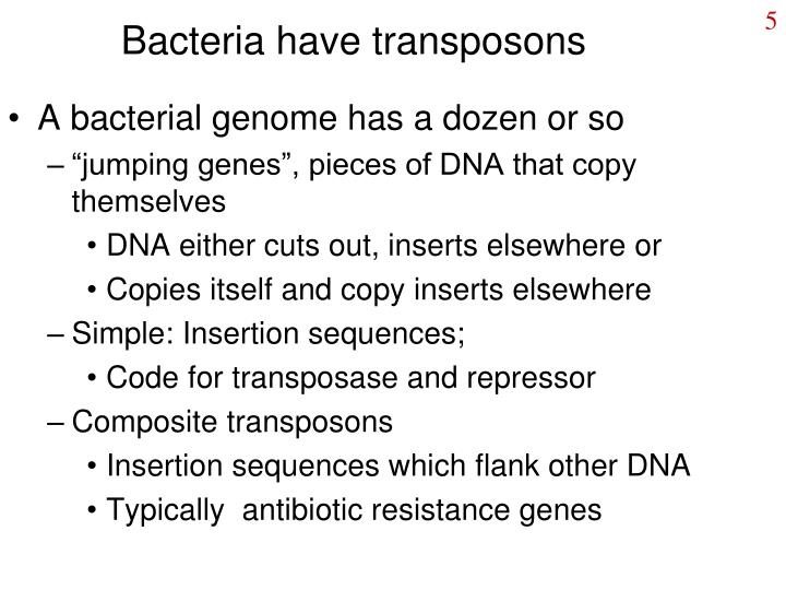 Bacteria have transposons