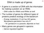 dna is made up of genes