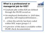 what is a professional or managerial job for kis