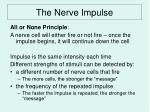 the nerve impulse6