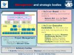 management and strategic bodies