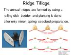 ridge tillage