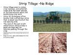 strip tillage no ridge