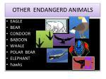 other endangerd animals