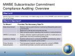 mwbe subcontractor commitment compliance auditing overview