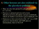 6 other hexoses are also oxidized via the glycolysis pathway