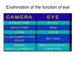 examination of the function of eye