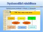 psychosoci ln rehabilitace