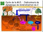 cycle de la m o indicateurs de dynamique de min ralisation du c